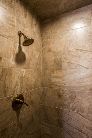 Walk-in-Shower-Cad